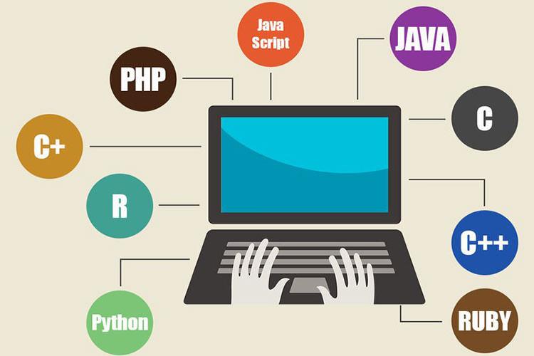 جاوا، پی اچ پی یا دات نت: کدام زبان برنامه نویسی درآمد بیشتری دارد؟